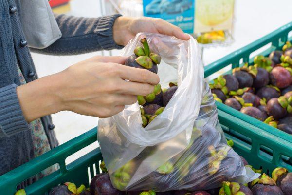 Photo of Dal 1 gennaio solo sacchetti biodegradabili, Confcommercio Molise illustra le novità: attenzione alle sanzioni | PrimoPiano Molise