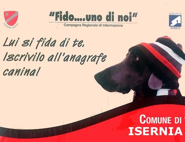Photo of Isernia, giornata di iscrizione gratuita all'Anagrafe Canina