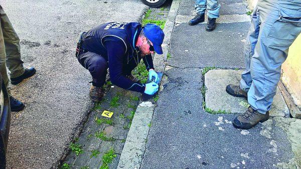 Photo of Bocconi avvelenati, a Venafro la task force dei Carabinieri Forestali | PrimoPiano Molise