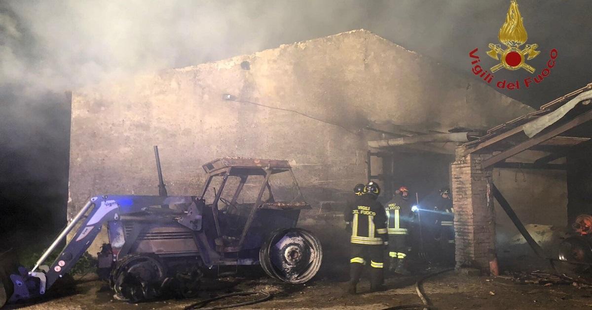 Photo of POZZILLI – A fuoco un capannone, capi di bestiame tratti in salvo dai Vigili del Fuoco | Molise Network